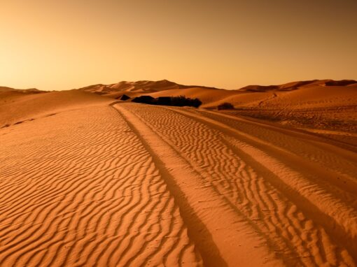 Desde Fez Ruta de 5 Días – De Fez a la Tierra Bereber
